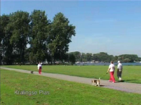 Kim Engelen, Video Kralingen, Screen-still of Kralinge Plas, Rotterdam, Netherlands, October 2005