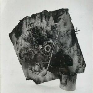 Kim Engelen, Aftermath No.8, Photograph 11 (Aftermath Sculpture No.4), 1993